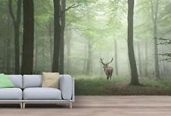 Red Deer In Foggy Autumn Colorful Forest Wallpaper - Large Wall Mural