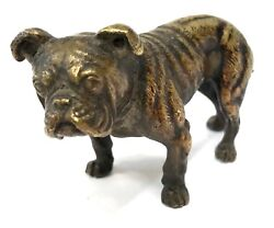 Antique Austrian Cold Painted Bronze Bulldog Dog In The Style Of Bergman