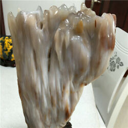 5260g Collectible Natural Petrified Wood Fossil Jade Crystal Specimen+stand 27n