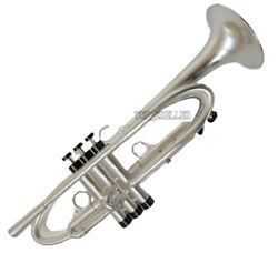 Based On Harrelson Trumpet Brush Silver Professional Horn Leather Case