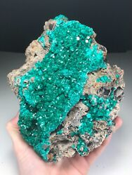 Incredible 20.5 Cm Dioptase Cluster From Mindouli Republic Of Congo