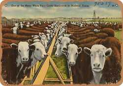 Metal Sign - Texas Postcard - One Of The Many White Face Cattle Stockyards In M