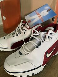 Nike Lebron Air Zoom Generation 1st Game Us Menand039s Size 11.5 308214 112 James