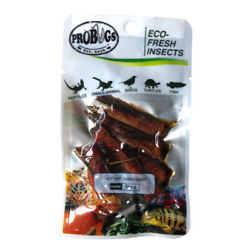 PROBUGS vacuum sealed GRASSHOPPER feeder insects for bearded dragons reptiles...