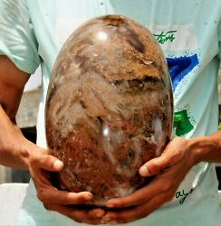 31cm Huge Specimen Yellow Mexican Moss Agate Crystal Healing Energy Stone Lingam