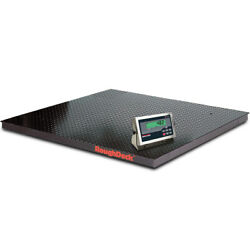 Rice Lake 168146, Roughdeck Floor Scale W/ 482 Indicator, 5000 Lb X 1 Lb, Ntep