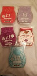 Scentsy Bars New Lot of 5 Look.