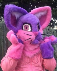 New Fursuit Partial Pink And Purple Fursona House Cat 2d Eyes Clover Kitty Furry