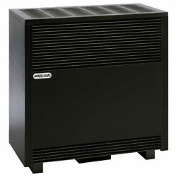 Williams Enclosed Front Room Heater Natural Gas 50000 Btu