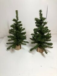 Darice Canadian Pine Tree with Wood Base: 60 Tips 12 inches 12quot; 2 Pack