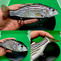 Baby Striper Glide Bait Sinking Jointed Swimbait 6.69andrdquo 3.06 Oz Bass Lure