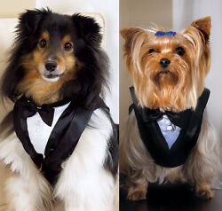 Pet Tuxedo - Great Wedding or Formal Attire for your Pet $20.00