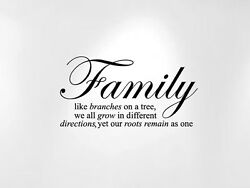 Family Like Branches on a Tree Vinyl Wall Baby Quote Decal 24quot; Wide x 12quot; High