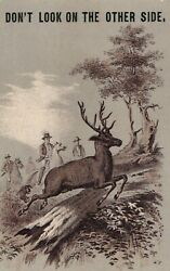Olund And Josephson Star Clothing House Trunks And Valises, Hunters Buck Woods Z9