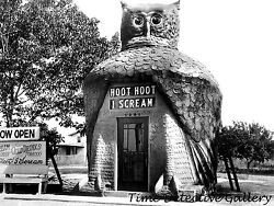 quot;Hoot Hoot I Screamquot; Ice Cream Stand Los Angeles CA 1930s Historic Photo Print