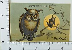 Boraxine Anthropomorphic Be Owl'd Baby Owl Messing With Sleeping Adult F65