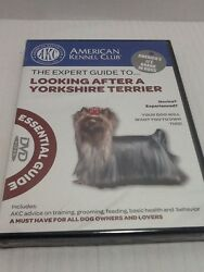 The Expert Guide To Looking After A Yorkshire Terrier(DVD2008) New