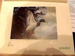 Il1 1975 Illinois 1st Of State Duck Print Cat 4575 Remarqued Iil1drdss