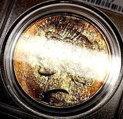 1923 Peace Dollar Ms62 Pcgs Monster Gold Leaf Toned Obverse Bright White Reverse