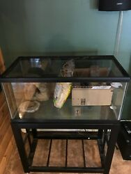 40 gallon breeder tank with stand (bearded dragon kit)