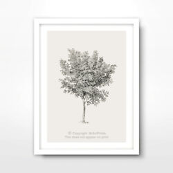 TREE ILLUSTRATION ART PRINT Poster Home Decor Wall Trees Picture Artwork A4 A3A2
