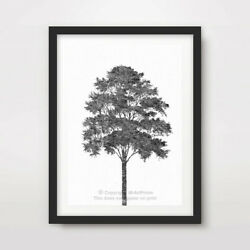 BLACK WHITE TREE ART PRINT Poster Home Decor Wall Trees Picture Artwork 10 SIZES