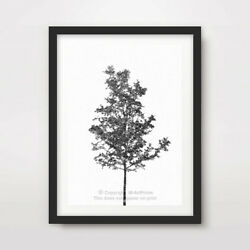 BLACK WHITE TREE ART PRINT Poster Room Decor Wall Trees Picture Artwork Outline