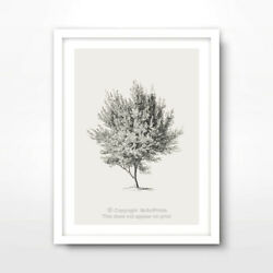TREE ILLUSTRATION ART PRINT Poster Home Decor Wall Trees Picture Artwork Drawing