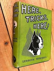 1923 HERE TRICKS HERE!  BOSTON TERRIER YOUNG BOYS BOOK WDJ - LEBBEUS MITCHELL