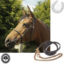 In-hand Bridle And Lead By Heritage Andndash English Leather Andndash Black Havana Andndash 4 Sizes