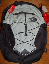 NWT Women's The North Face Borealis Backpack  Subtle Green  LIFETIME WARRANTY