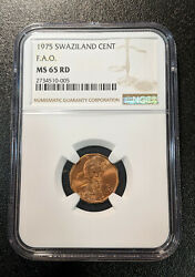1975 Ms65 Rd Swaziland Cent Fao Ngc Unc Km 21 One Graded Higher Food For All