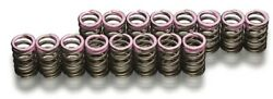 Toda Racing Up Rate Valve Spring Set Of 16 For Honda F20c/f22c/k20a From Japan