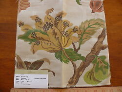 Vervain Bellary Vine Peach Yellow Blue Red Flowers And Fruit On Eggshell Bty