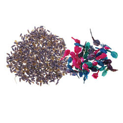 Multicolor Natural Pressed Dried Flowers Flesh Petals for Home Decor Gifts