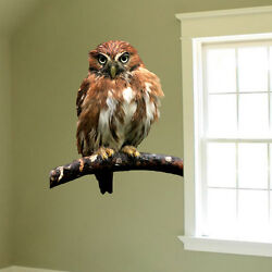 Owl Wall Decal Mural Bird Wise Wild Animals Removable Tree Branch Vinyl a18