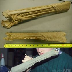 Alien 3 Dog Alien Inner Jaw Adi Production Copy Incredibly Rare Sideshow