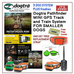 Dogtra Pathfinder Mini /3 E-collars + 2 Free Straps Flea Comb And Water Bowl