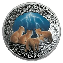 5 Oz. Pure Silver Glow-in-the-dark Coin - Natureand039s Light Show Stormy Nightandnbsp