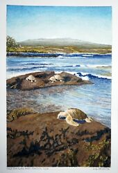 Hawaii Watercolor Painting Sea Turtles And Snowy Mauna Loa By By L. Segedin 120