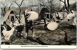 Postcard Exaggeration Chickens Eggs Morning Exercises On Poultry Farm BF