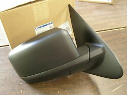 Nos Oem Ford 2003 2006 Expedition Outside Door Mirror 2004 2005 5l1z-17682-daa