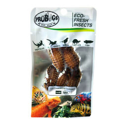 PROBUGS vacuum sealed DUBIA feeder insects for bearded dragons reptiles lizar...
