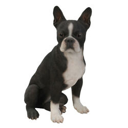 Realistic Life Size Boston Terrier Statue Detailed Sculpture Glass Eyes Hand...
