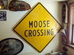 Scarce 1960s Moose Crossing Retired Highway Steel Sign Marked 4ft X 4ft