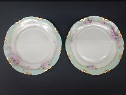 Bavarian Hutschenreuther Selb Hand Painted Floral Lhs Limoges 9.75 Plate German