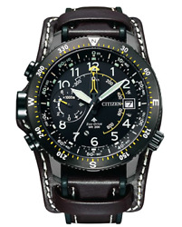 Citizen Watch Promaster Limited To 600 Land Series Articlon Free Ships F Japan