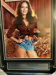 Catherine Bach Autographed 8x10 Photo With New Custom Framing