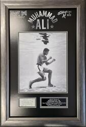 Muhammad Ali The Greatest Signed And Framed Display Aftal And Uacc + Registered Coa