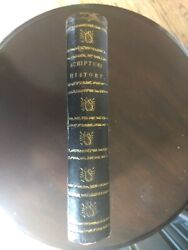 1800s Scripture Natural History 94 Coloured Plates Birds Dogs Deer Snakes Etc